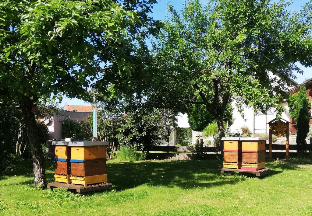 Bienenstand Aschaffenburg 1